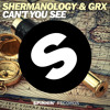 Shermanology & GRX - Can't You See (Original Mix)