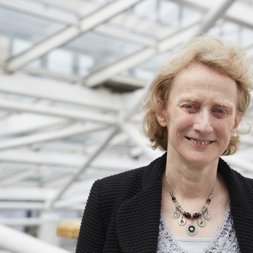 Professor Dame Athene Donald says more role models are needed in science