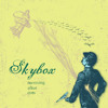 Skybox-Buckets