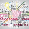 CALIFORNIA  LOVE / REMIX