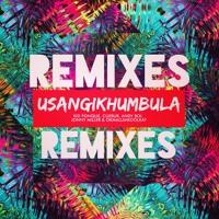 Okmalumkoolkat - Usangikhumbula (Jumping Back Slash Remix)