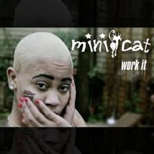 "Mini Cat ""Work It"" Remixxed by Flipset Fred"