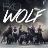 EXO - WOLF (Korean ver)