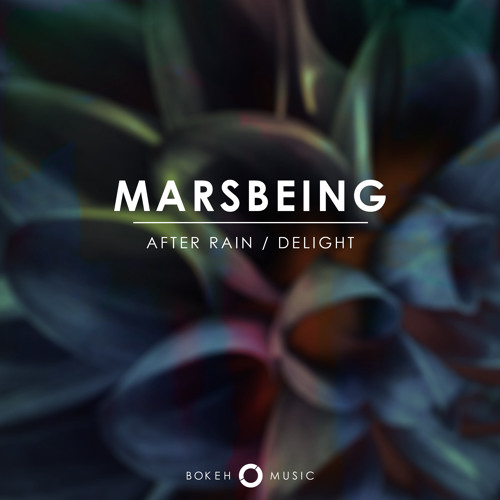 After Rain/Delight [Bokeh Music]