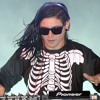 Skrillex Summit Electro Mix  Free Mp3 Download