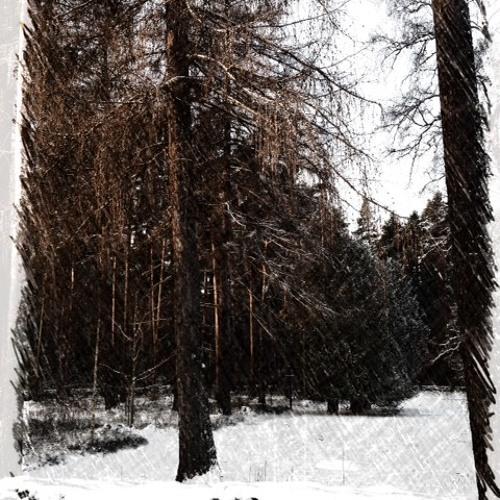 Téli estéken 02