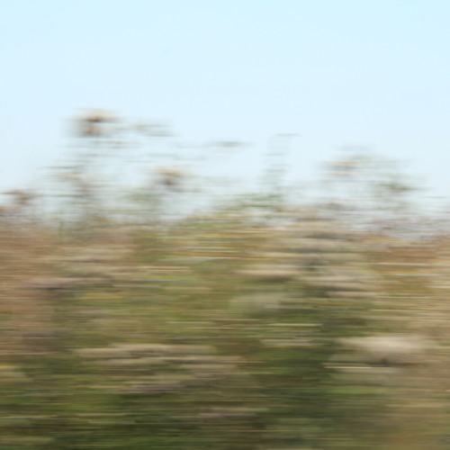 In Moving Stillness (2013)