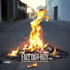 Fall Out Boy - My Songs Know What You Did In The Dark Portada del disco