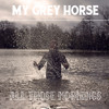 My Grey Horse - All Those Mornings