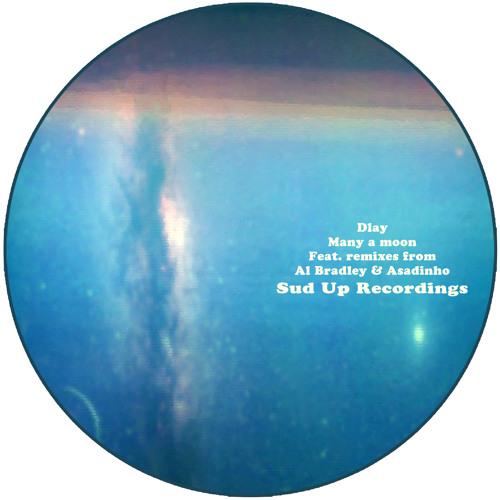 Dlay - Many A Moon (Sud Up Recordings)