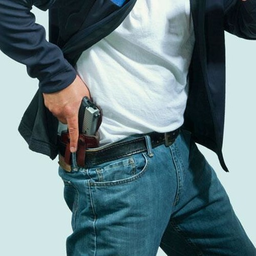 Curious City: Gay marriage and conceal carry in the primaries