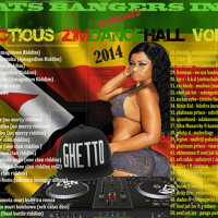 Infectious Zimdancehall Vol 2 (2014) - DJ TRAVELLA