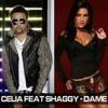 Shaggy Feat. Celia - Dame