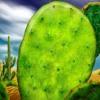 Cactus - Narine Dovlatyan, music & lyrics by Karen Grigoryan