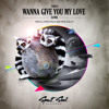 Xandl - Wanna Give You My Love (Mark Lower Remix) [SSR016] mp3