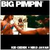 Jay Z - Big Pimpin (Kid Cedek x Niko Javan Remix)