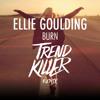 Ellie Goulding - Burn (Trendkiller Remix) (FREE DOWNLOAD)