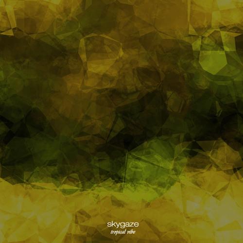 Skygaze - Tropical Vibe - Love Our Records