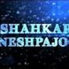 BE TO CHE - Shahkar Bineshpajooh/به تو چه! - شاهکار بینش پژوه