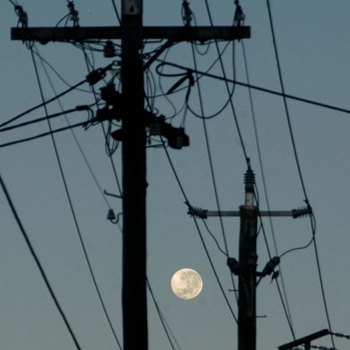 QLD bright ideas: Powerlines underground