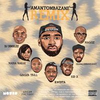 Riky Rik - Amantombazane (Ft. DJ Dimplez, Maggz, Ginger Breadman, Kid X, Kwesta, Nadia Nakai & Okmalumkoolkat)