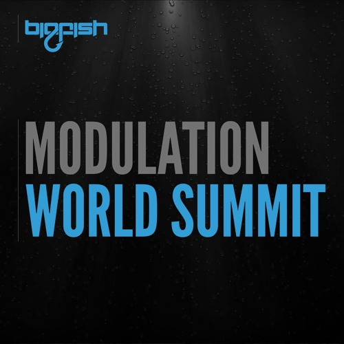 Modulation - World Summit [out now on big fish recordings]