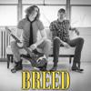 Breed (Nirvana Cover)