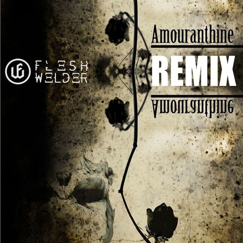 Amouranthine (VOID PROTOTYPE Remix)