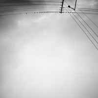Armand Margjeka - Hummingbird