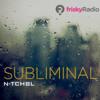 N-Tchbl - Subliminal Frisk Radio February 2014