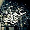 Amr Diab - Hits Medley (Hala Feb 2014  عمرو دياب - ميدلي (هلا فبراير