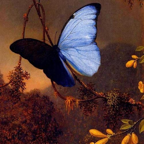 """""""Le papillon et la fleur"""" by Gabriel Fauré - soprano: S.Kult, guitar: F.Hiemenz"""
