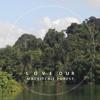 Love MacRitchie Radio Podcast 1 - Interview with Lysa Aya