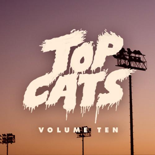 Top Cats Vol.10