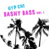 BASHY BASS VOL.1 (A BASS-HEAVY DANCEHALL REGGAETON HIP HOP MASH UP MIX !!!!)