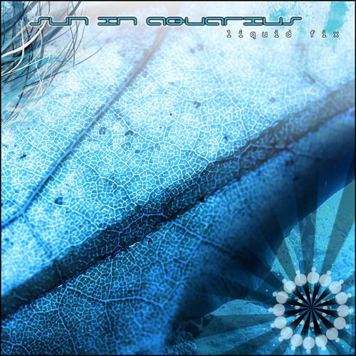 Sun In Aquarius - Liquid Fix EP