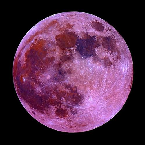 Illesnoise - #8 Moonlight Lovers