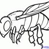 Zee Avi - Honey Bee (Cover)