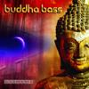 Daft Punk - Get Lucky vs. Ratatat - Wildcat (Buddha Bass & Cheeky Remix)