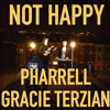 Not Happy (Minor Blues Remix) - Pharrell Williams ft. Ian Dansey