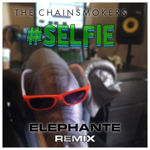 The Chainsmokers - #SELFIE (Elephante Remix) [FREE DOWNLOAD]