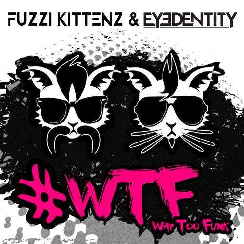 Way Too Funk by Fuzzi Kittenz & Eyedentity