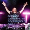 Sunshine - David Guetta & Avicii (BeatsonBeats Remix)