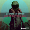 Dreams In Static - You're On Your Own (Feat. Akie Bermiss) (Narox Remix)*Sneak Edit*