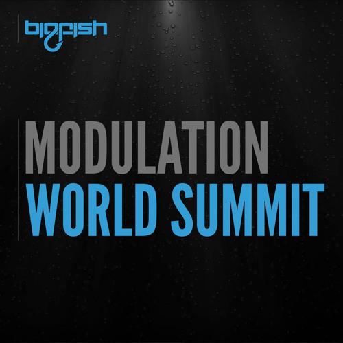 Modulation - World Summit (Original Mix)