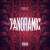 Dmac - Panoramic (feat. Sage The Gemini & Show Banga)