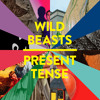 Wild Beasts - A Simple Beautiful Truth (East India Youth Remix)