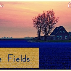 Blue Fields Feat. Conscious