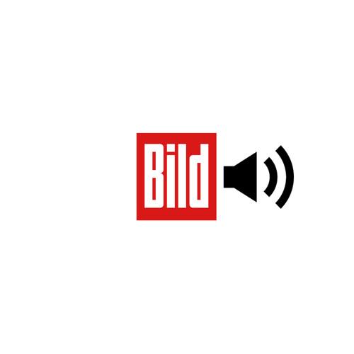 """BILD """"Rettungsschirm"""" Funkspot 25sek"""