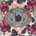 SZA Child's Play (Ft. Chance The Rapper) (Prod. XXYYXX) Artwork